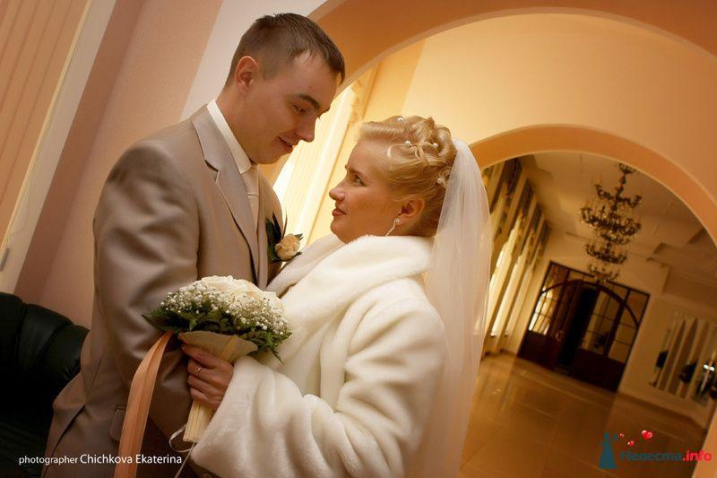 Фото 92228 в коллекции Свадьба - Фотограф Чичкова Екатерина