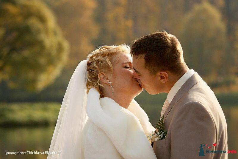 Фото 92233 в коллекции Свадьба - Фотограф Чичкова Екатерина