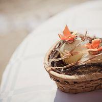 Гнездышко с перепелиными яйцами и колечками