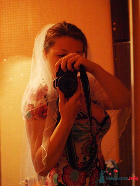 Фото 108921 в коллекции Мои фотографии - SAFRU