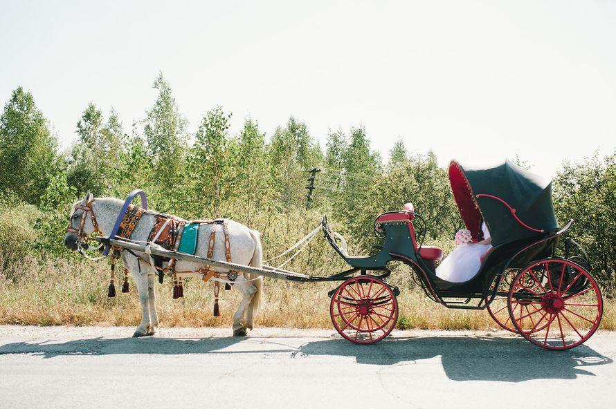 """Фото 4781665 в коллекции Портфолио - Агентство """"Эпатаж"""" - организация свадьбы"""