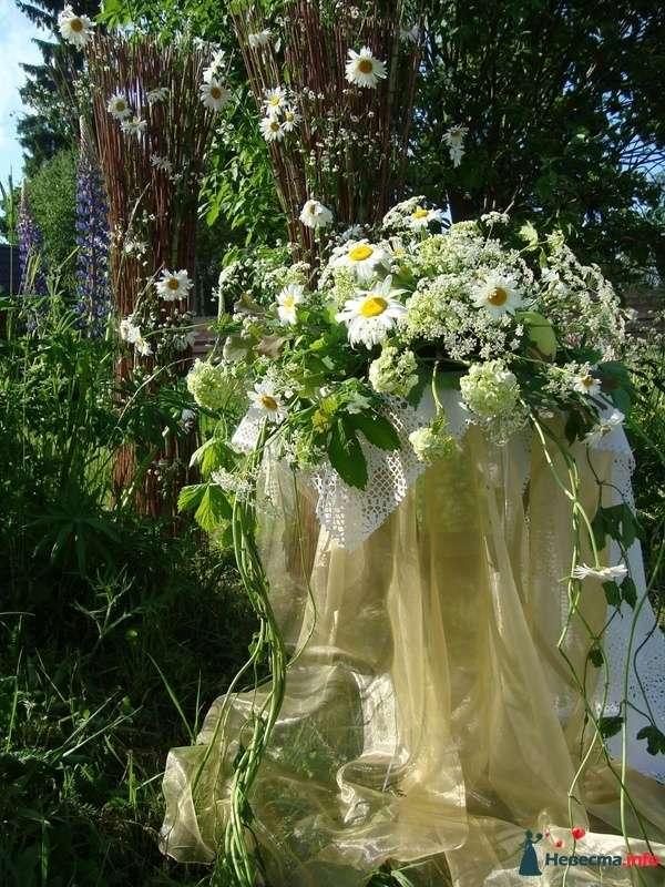 ромашковая свадьба - фото 107373 Флорист-декоратор Янина Венгерова
