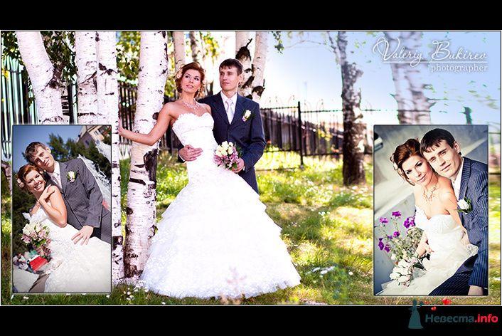 Фото 96003 в коллекции Свадебные фото - автор Валерий Букирев - Свадебный фотограф Валерий Букирев