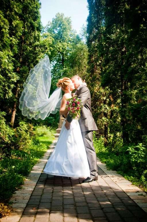 брали свое, свадьба в лианозовском парке фото быстро выбрать