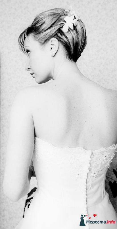 Фото 108826 в коллекции Свадьба - Невеста01