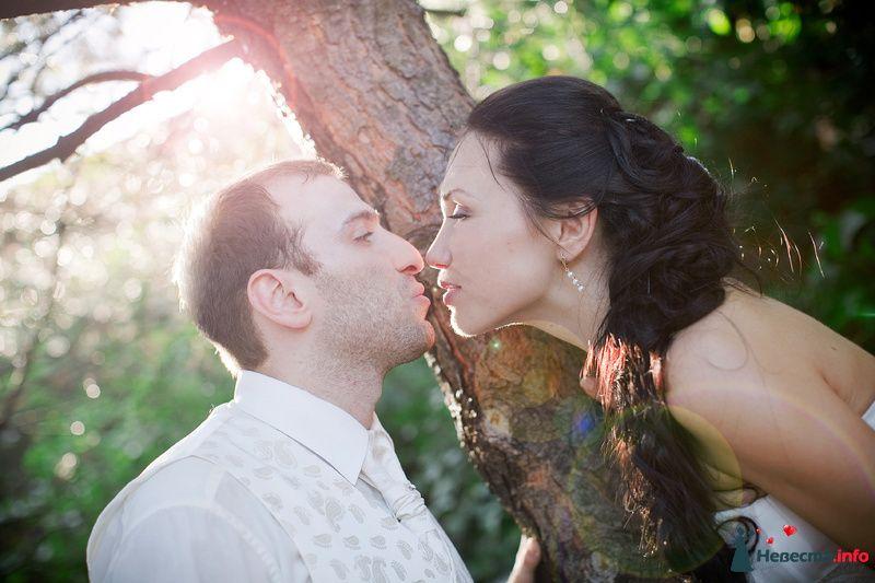 Фото 124604 в коллекции Свадьба - Невеста01
