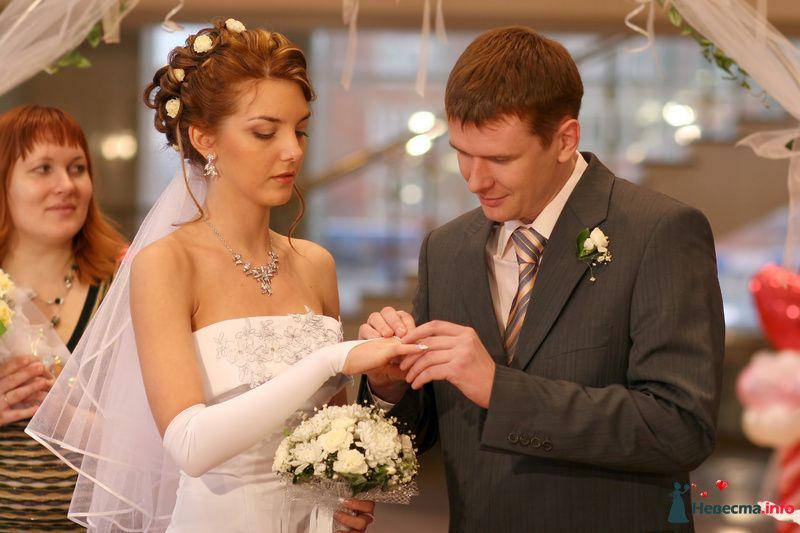 Фото 99897 в коллекции Свадебные истории: Николай и Юлия