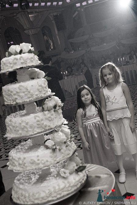 Фото 96960 в коллекции Мои фотографии - Алексей Пырков - фотограф свадеб и людей