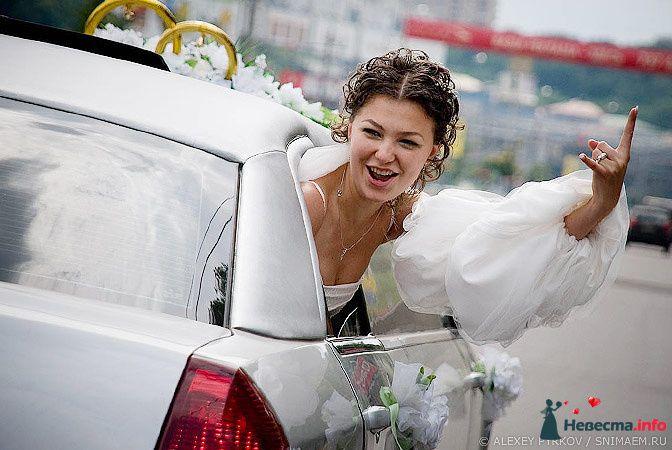 Фото 96962 в коллекции Мои фотографии - Алексей Пырков - фотограф свадеб и людей