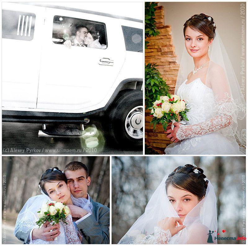 Фото 96976 в коллекции Мои фотографии - Алексей Пырков - фотограф свадеб и людей