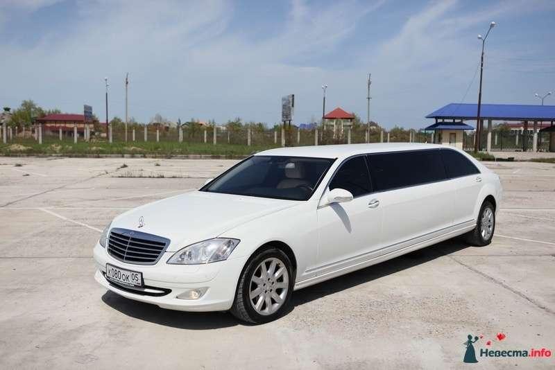 """Белый """"Mercedes"""" на фоне зелени и автостоянки. - фото 103000 Компания """"КАРАВАН-СЕРВИС"""""""