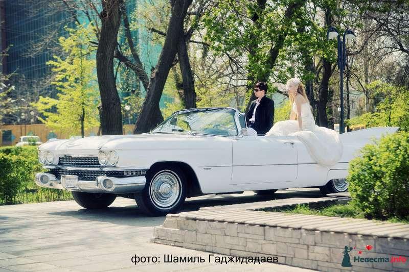 """Фото 97866 в коллекции Свадебное фото - Компания """"КАРАВАН-СЕРВИС"""""""