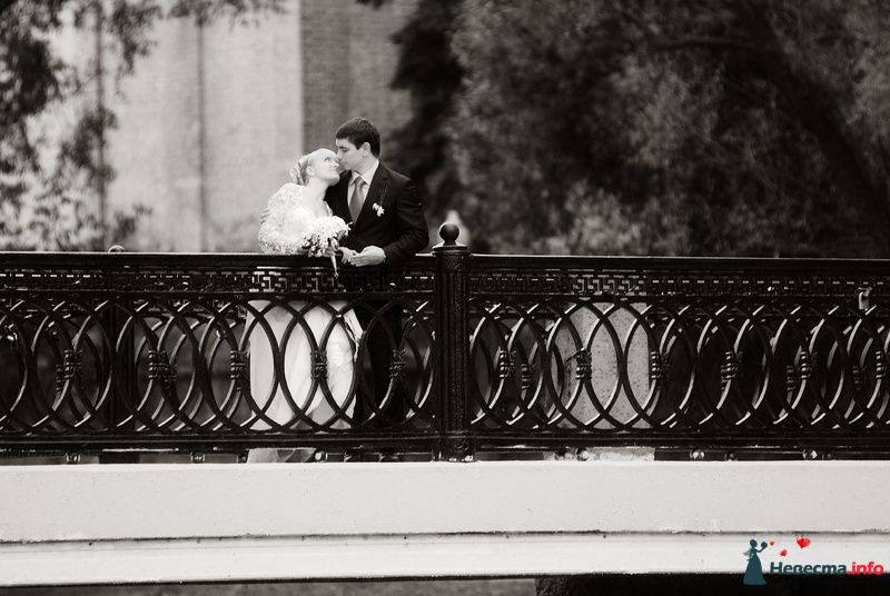 Жених и невеста стоят, прислонившись друг к другу, в парке возле ограждения - фото 98297 Фотограф Бернард Роман