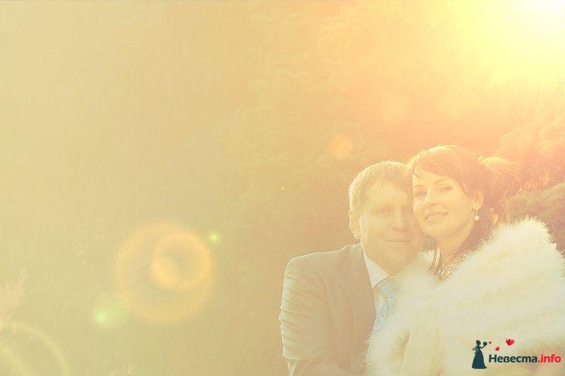 Фото 98740 в коллекции Свадебные фотографии - Ян