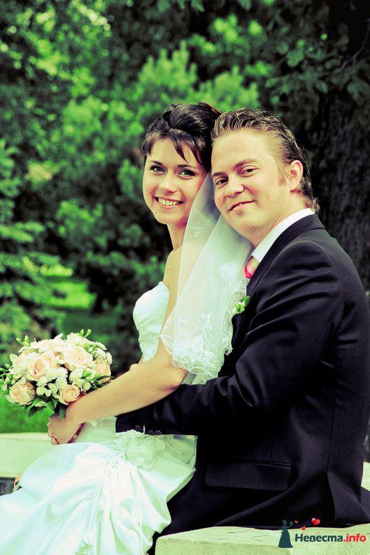 Фото 98752 в коллекции Свадебные фотографии - Ян