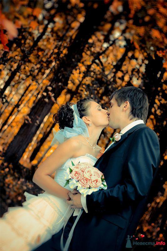 Фото 98753 в коллекции Свадебные фотографии