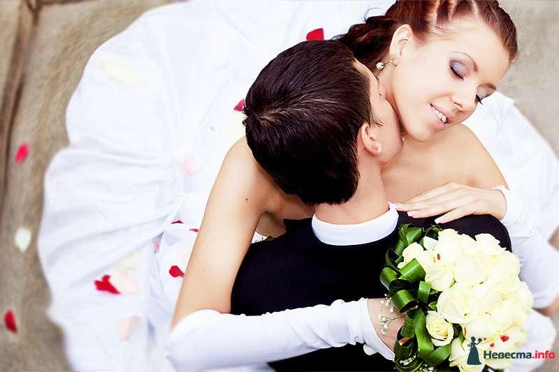 Фото 98791 в коллекции Свадьбы - фотограф Натали Солнечная