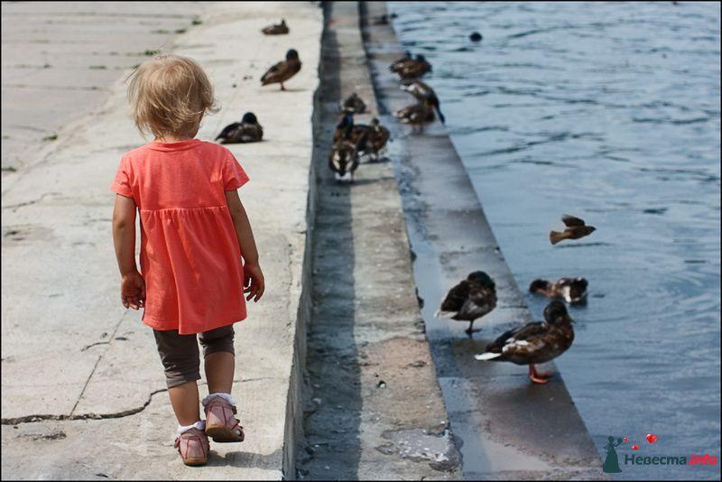 Фото 100577 в коллекции Детский мир