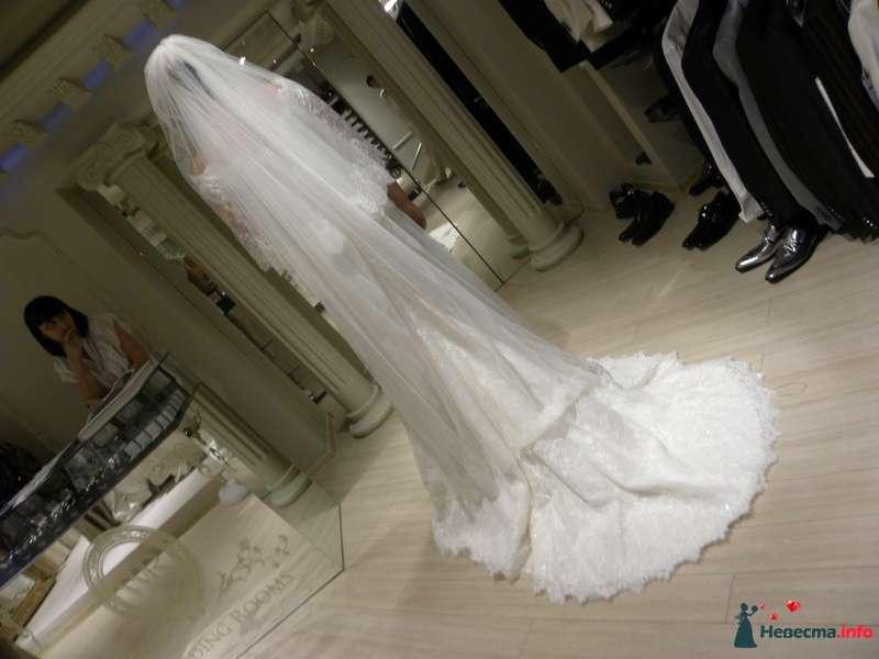 Фото 99693 в коллекции Мои фотографии - Невеста01