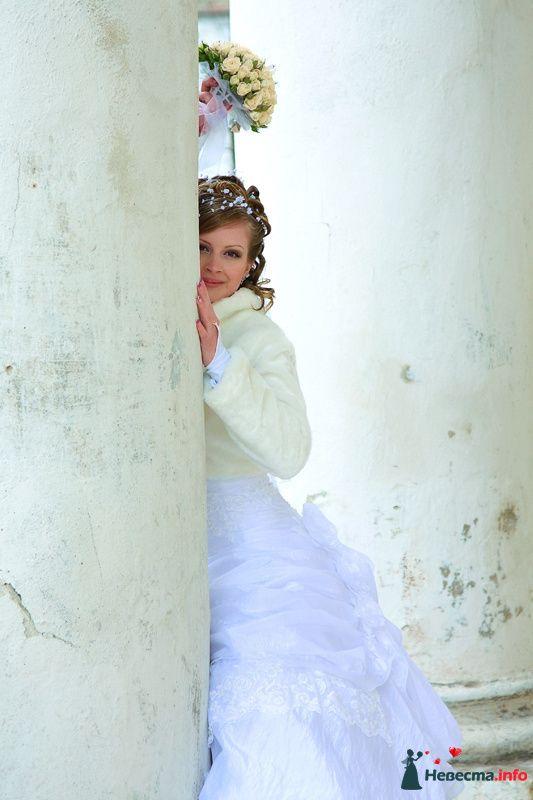 Фото 100045 в коллекции Фотограф Вячеслав Стукало - Свадебная фотография - Невеста01