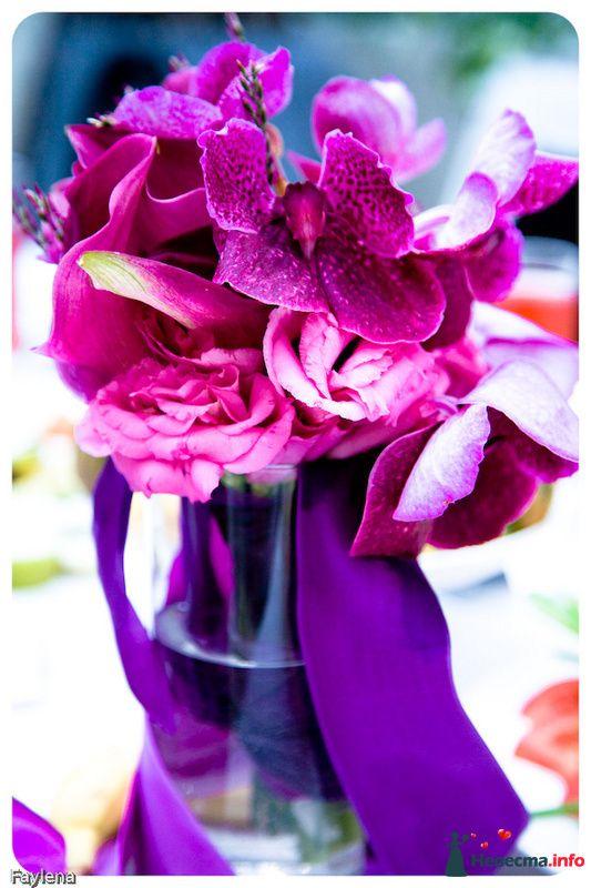 Фото 100617 в коллекции Wedding Day - фотограф Елена Файзуллина