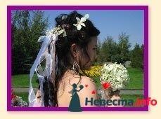 Фото 129435 в коллекции Мои фотографии - Katerina19-11