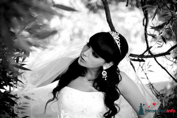 Прическа идеальна специально для меня! - фото 113428 Mashylia