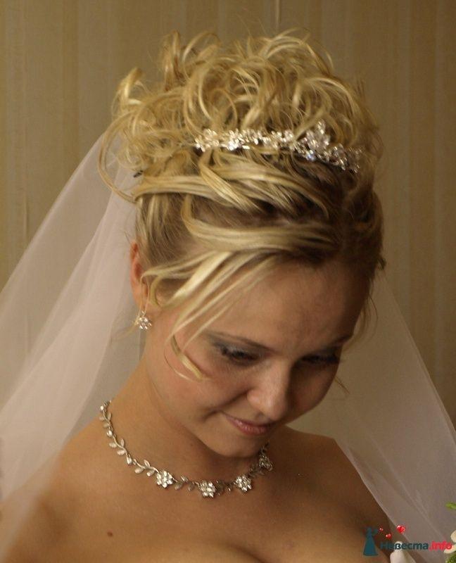 Фото 104409 в коллекции Фото работ моих невест - Стилист-декоратор Суринова Тамара