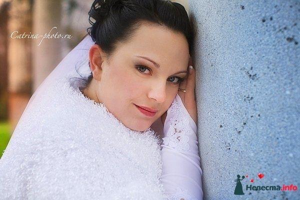 Фото 106341 в коллекции Фото работ моих невест - Стилист-декоратор Суринова Тамара