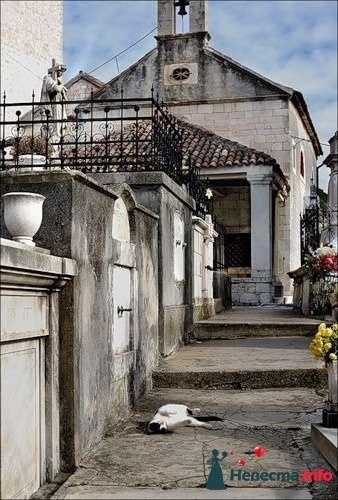 Фото 84268 в коллекции Хорватия - Фотограф Наталья Черкасова