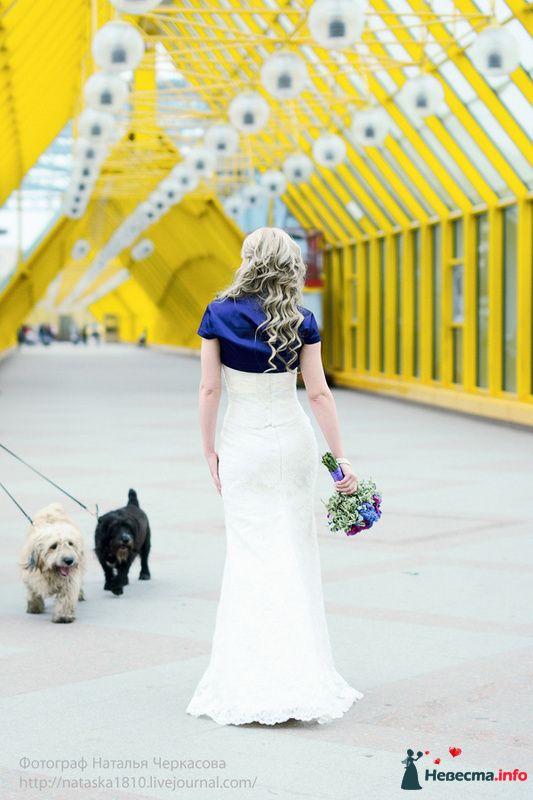 Фото 93246 в коллекции Свадебные - Фотограф Наталья Черкасова
