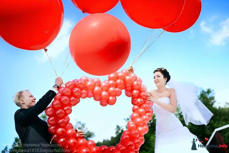 Фото 107495 в коллекции Свадебные - Фотограф Наталья Черкасова