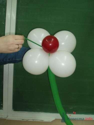 Фото 11491 в коллекции Как  украсить зал шариками самостоятельно - Невеста01