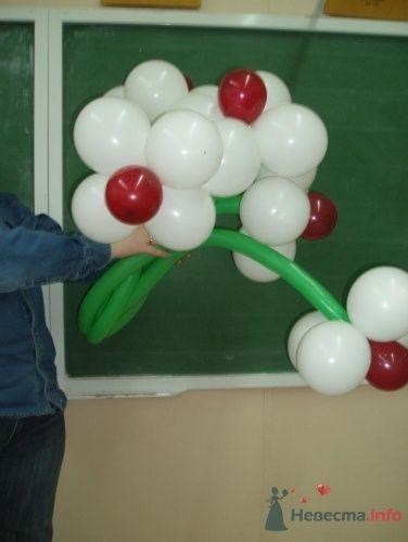 Фото 11493 в коллекции Как  украсить зал шариками самостоятельно - Невеста01