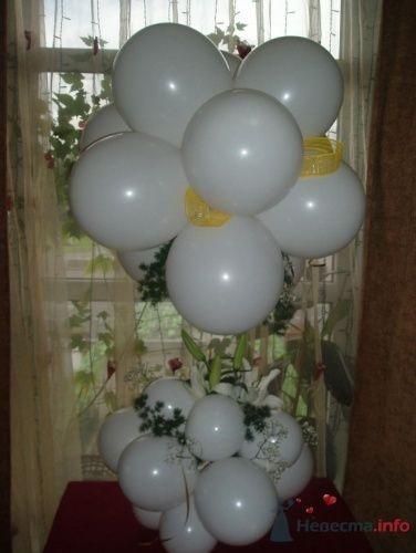 Фото 16372 в коллекции Как  украсить зал шариками самостоятельно - Невеста01