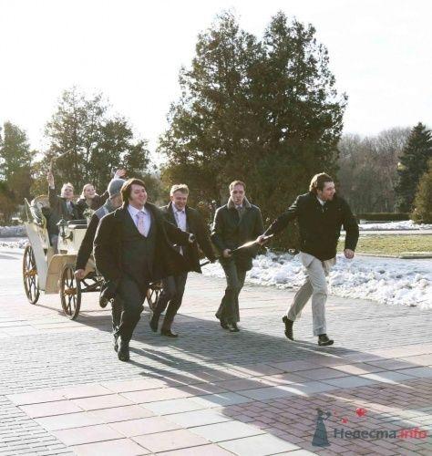 Фото 8455 в коллекции свадебная съемка - Gaag - фото-видео услуги