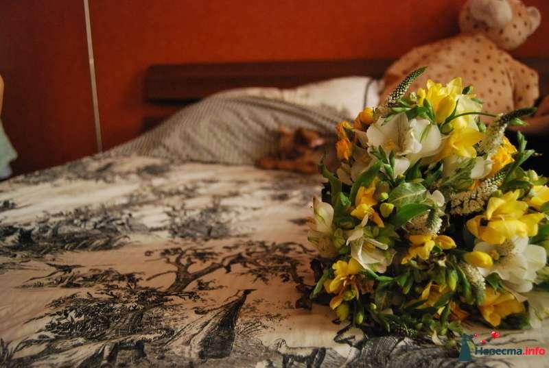 Фото 131543 в коллекции свадебное - Невеста01