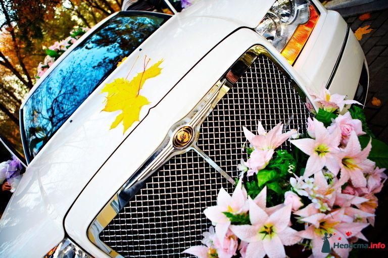 """Свадьба - Кивалл - фото 102144 Организация свадьбы - компания """"Кивалл"""""""