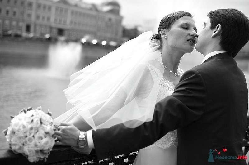 Фото 103718 в коллекции Свадебные фото - Фотограф Alexandr Osipov