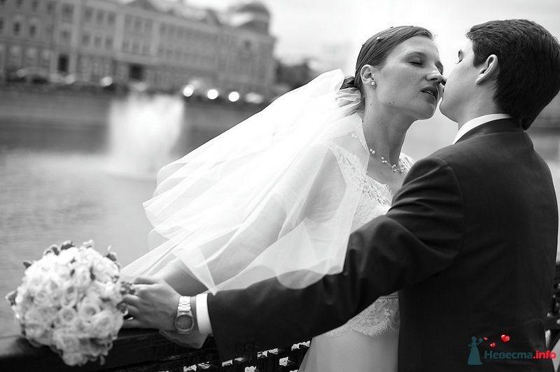 Фото 103718 в коллекции Свадебные фото