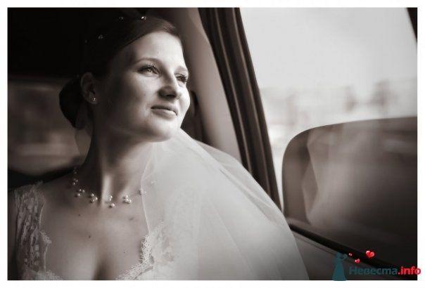 Фото 105355 в коллекции Свадебные фото - Фотограф Alexandr Osipov