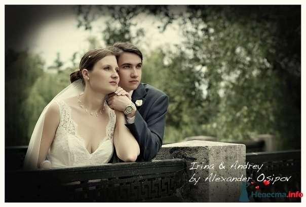 Фото 105363 в коллекции Свадебные фото - Фотограф Alexandr Osipov