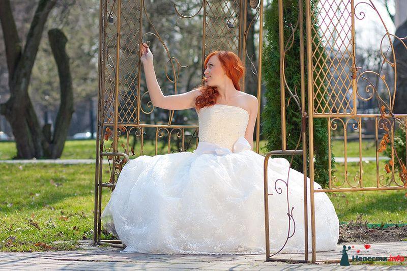 Фото 103149 в коллекции Свадебный фотограф Марина Шаранова  - Марина Шаранова