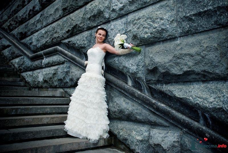 Фото 107541 в коллекции Свадебное фото - BitoCam - фото и видео