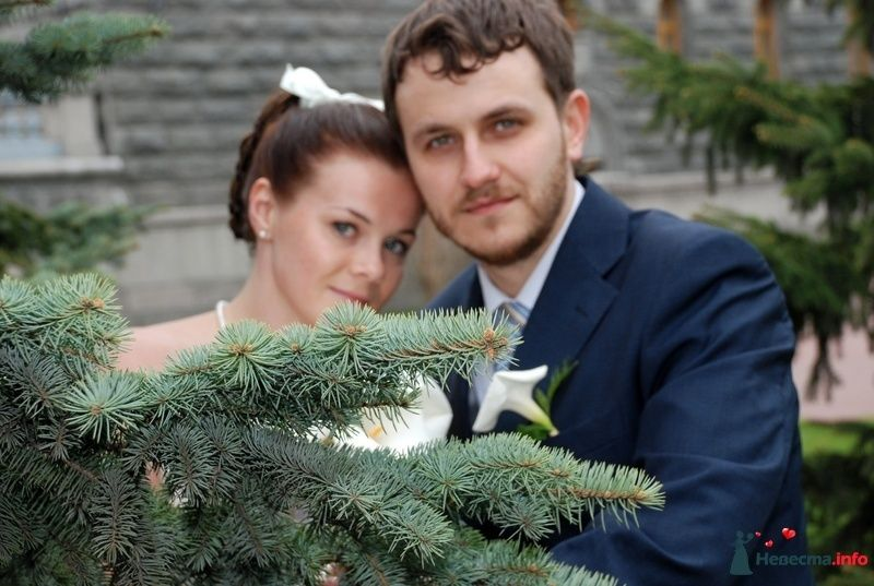 Фото 107542 в коллекции Свадебное фото - BitoCam - фото и видео