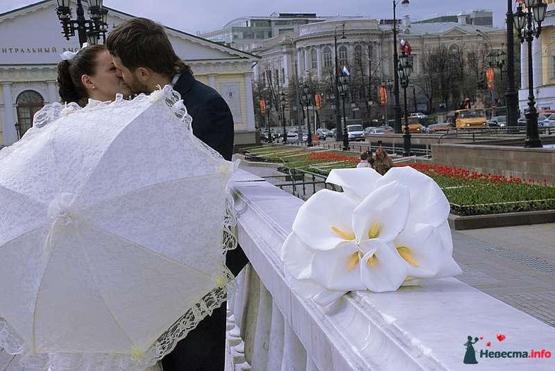 Фото 118286 в коллекции Свадебное фото - BitoCam - фото и видео