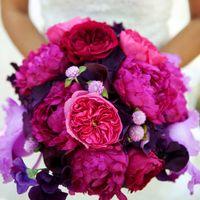 Яркий букет невесты в розовом цвете из пионов, калл и фиалок