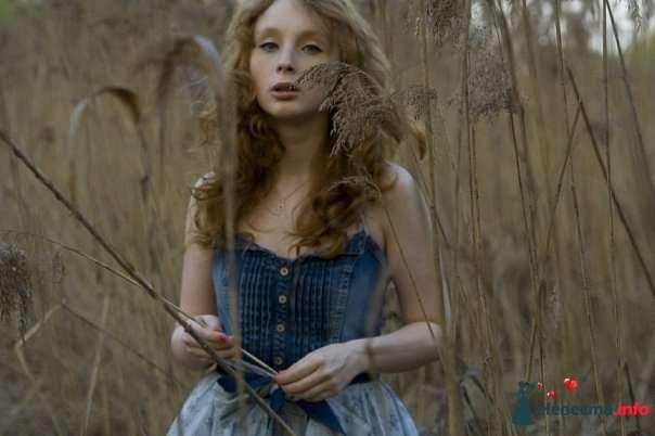 Фото 105400 в коллекции Пример моих работ - Анастасия Новикова - фотограф