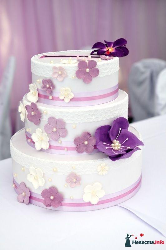 Торт для денег на свадьбу своими руками мастер класс