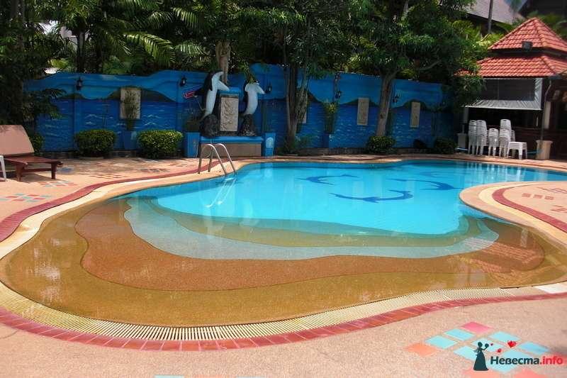 бассейн - фото 107018 Клёна